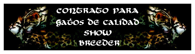 show-breeder