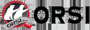 Logo Orsi