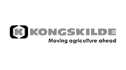 Logo Kongskilde - Grünlandtechnik, Getreidetechnik und Bodenbearbeitung bei Medl Landtechnik