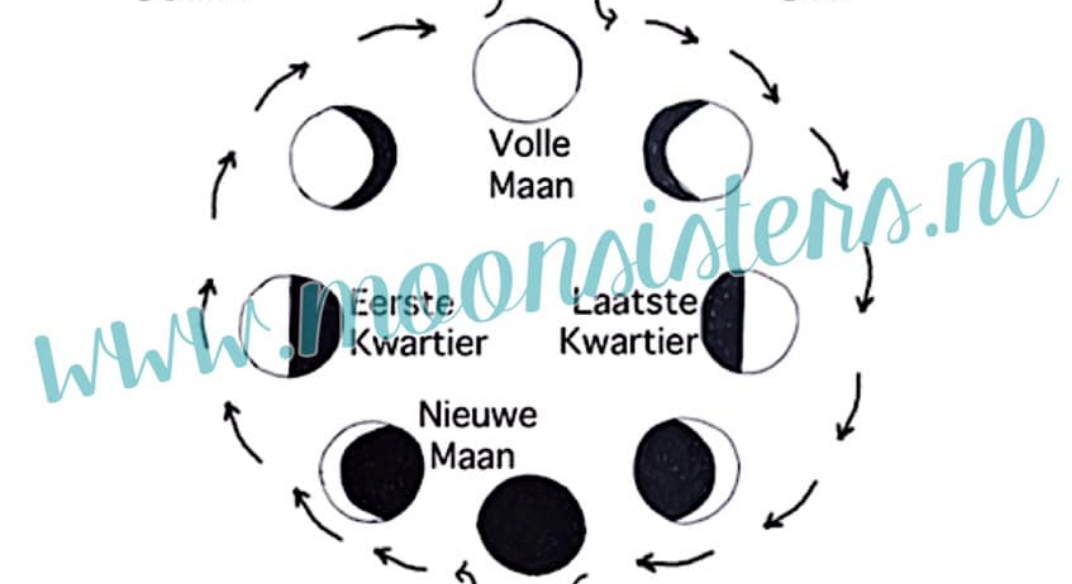 MaanCyclus & MenstruatieCyclus