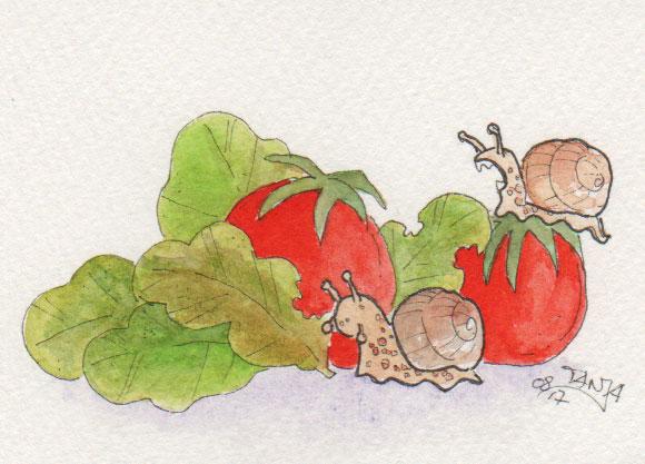 365-Tage-Doodle-Challenge - Stichwort: Sommersalat