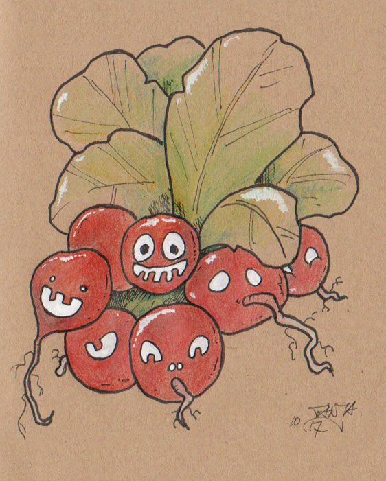 Zeichnung für die 365-Tage-Doodle-Challenge zum Thema: Radieschen.