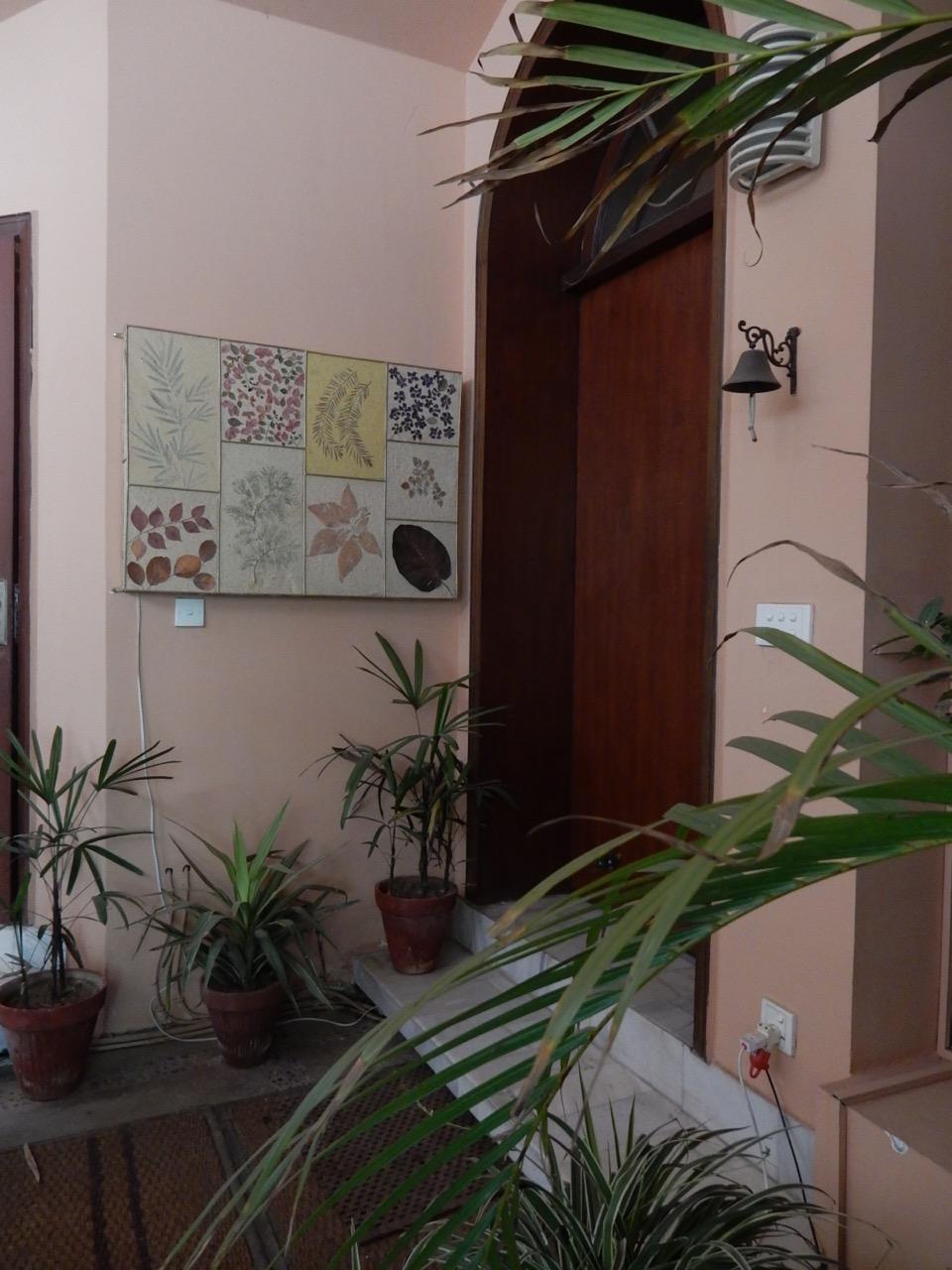 ヌザットは出張ヘア・カット&セットを時々やっている。そのお客の家には彼女の作品が飾られていた。