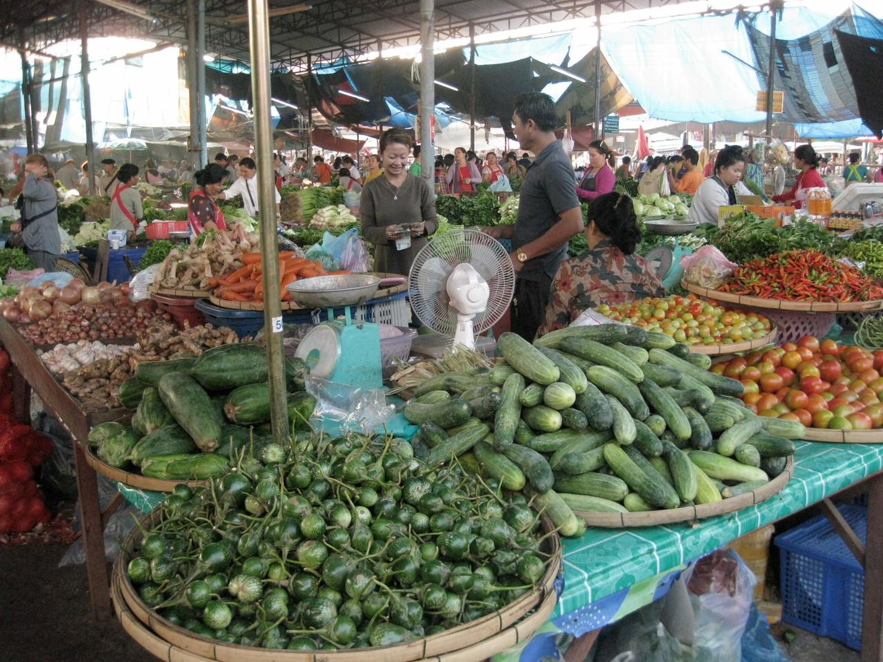 野菜は豊富。