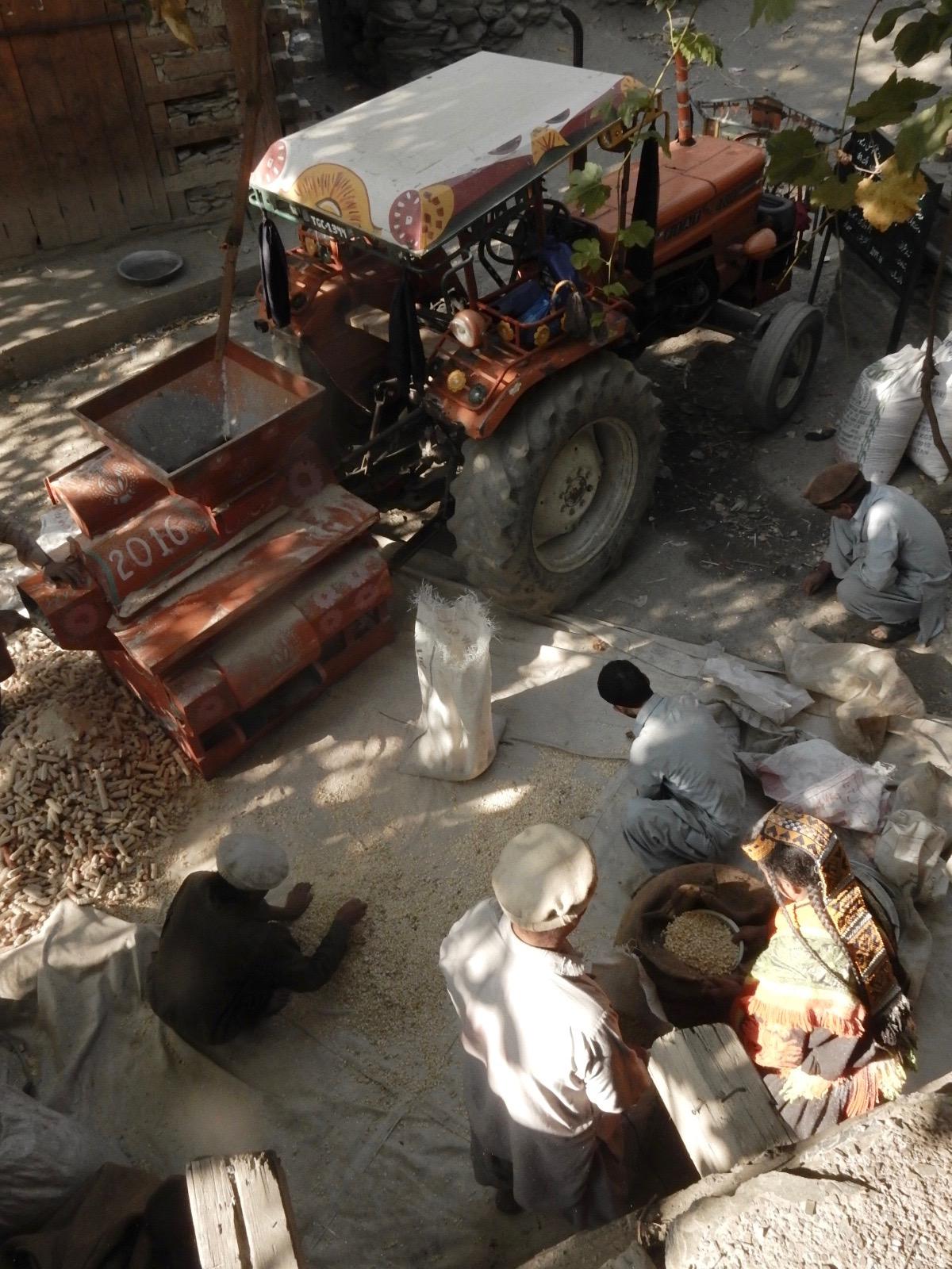 近年は麓の町から脱穀機がやって来て、トウモロコシを脱穀するようになった。以前は棒で叩いて実をほぐしていた。