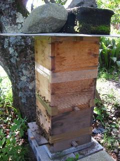 Nさんご夫婦は養蜂もやっておられた。