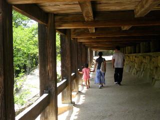 お寺の床下。