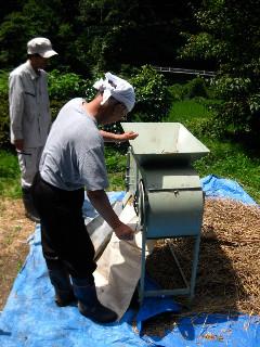 手回しの小麦脱穀機