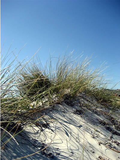 Sardinien am Strand