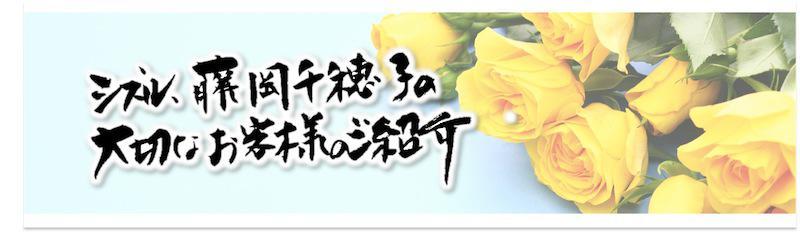 藤岡千穂子,プロフィール,実績,飲食店,コンサルタント