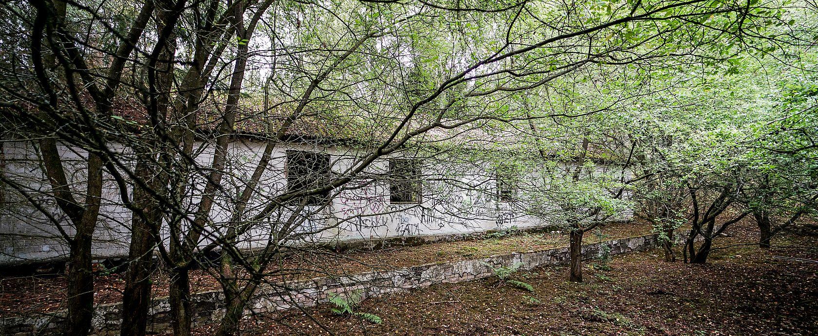 Im Wald versteckte Objekte