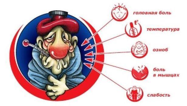 Картинки по запросу Правила поведения больного с симптомами гриппа