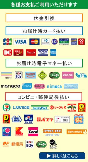 各種クレジットカード、各種電子マネー、コンビニ後払いがご利用頂けます。