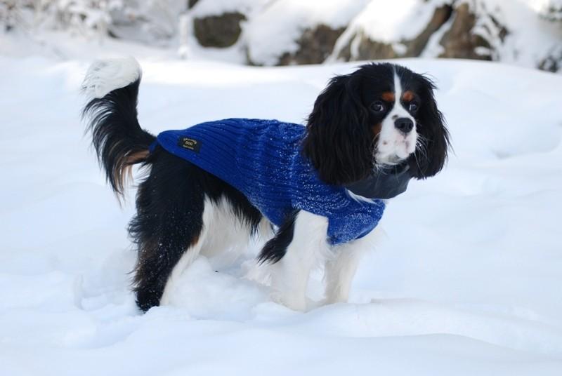 la prima volta sulla neve
