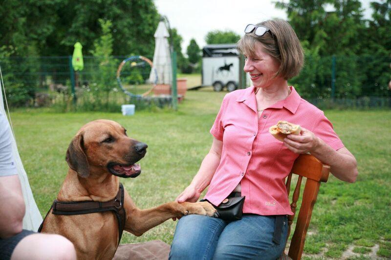 Zufriedene Hunde und Halter