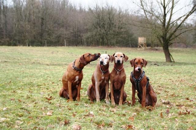 und noch ein Familienfoto