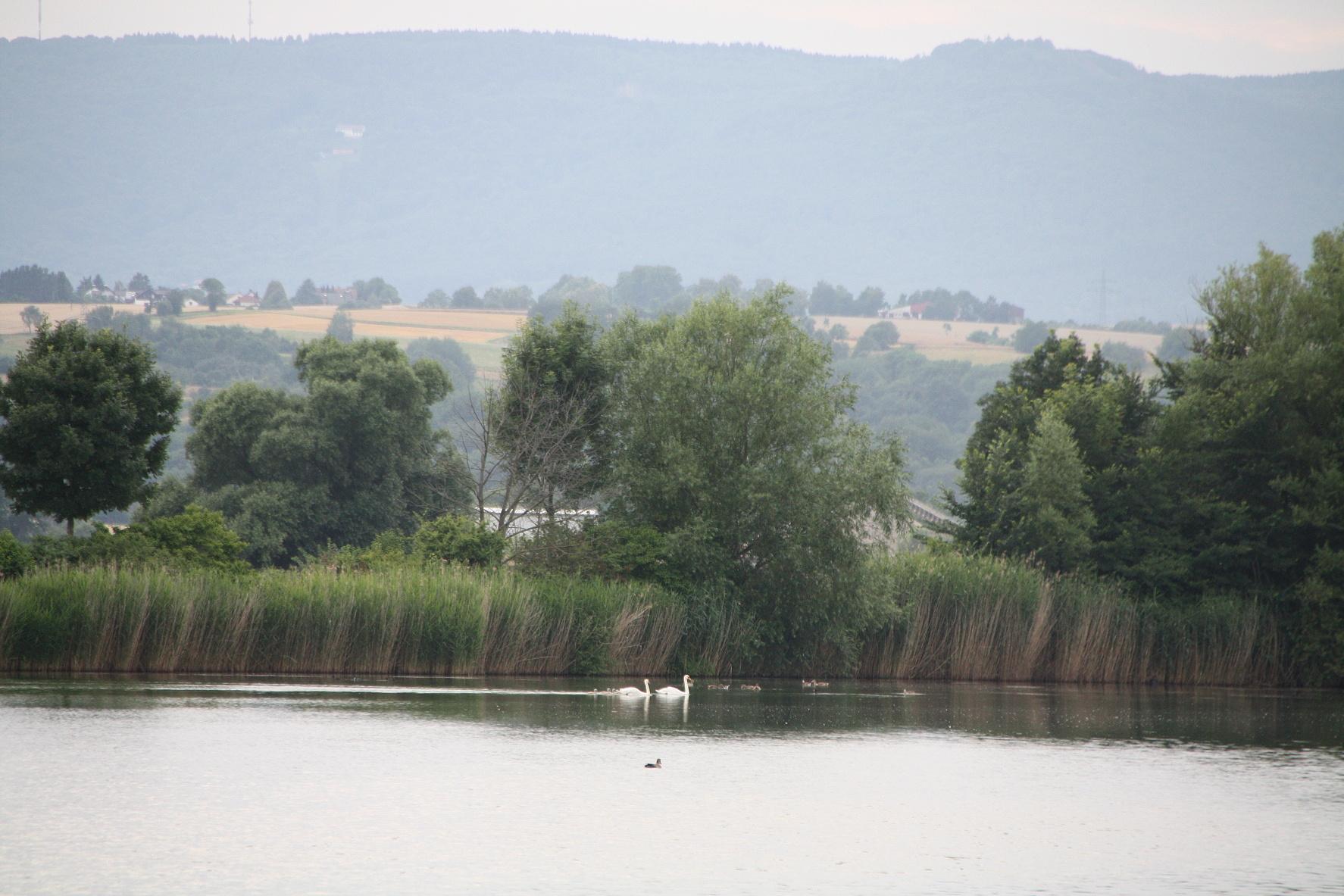 Unser schöner Platz am Meinhardsee