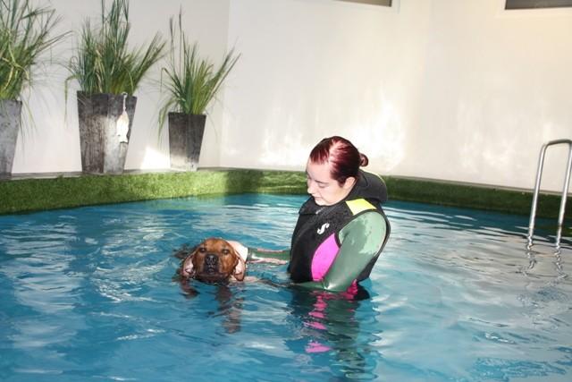 Zum Abschluss der Behandlung durfte sie schwimmen