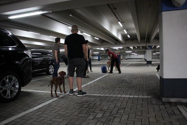 Treffen auf dem Parkdeck
