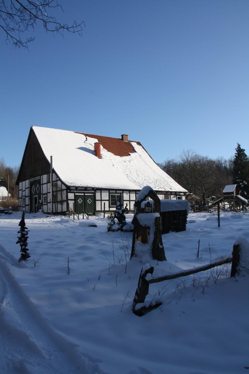 Auf dem Dumberg leben 3 Familien mitten im Wald