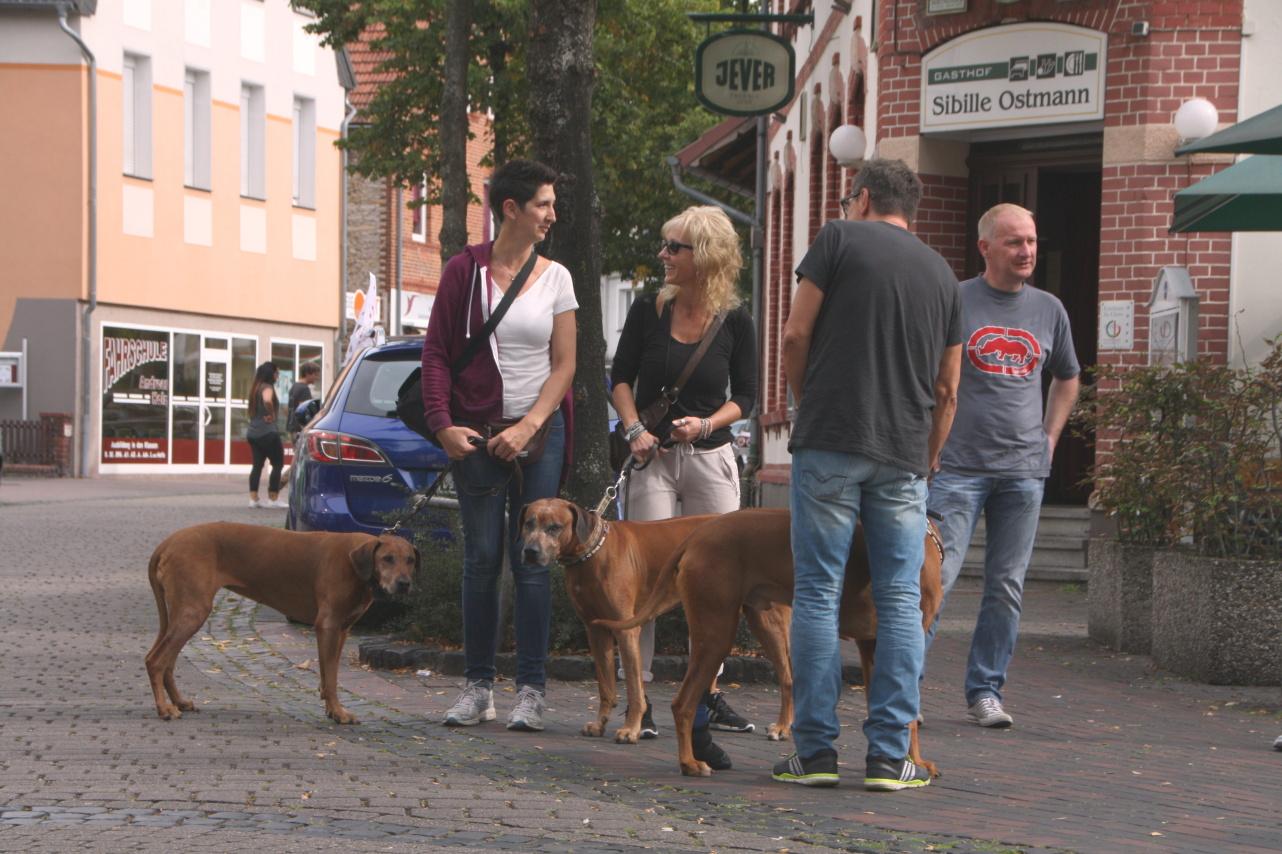 Diana und Christian mit Amara sowie Susanne und Frank mit Pandu