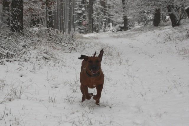 Schnee ist wie Sand unter den Füßen und animiert zum Rennen