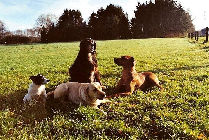 Max, Lara, Schalom und ich