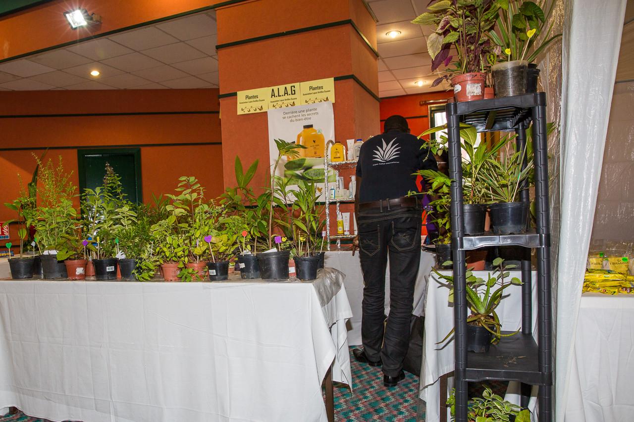 Vente de plantes en faveur de l'association ALAG