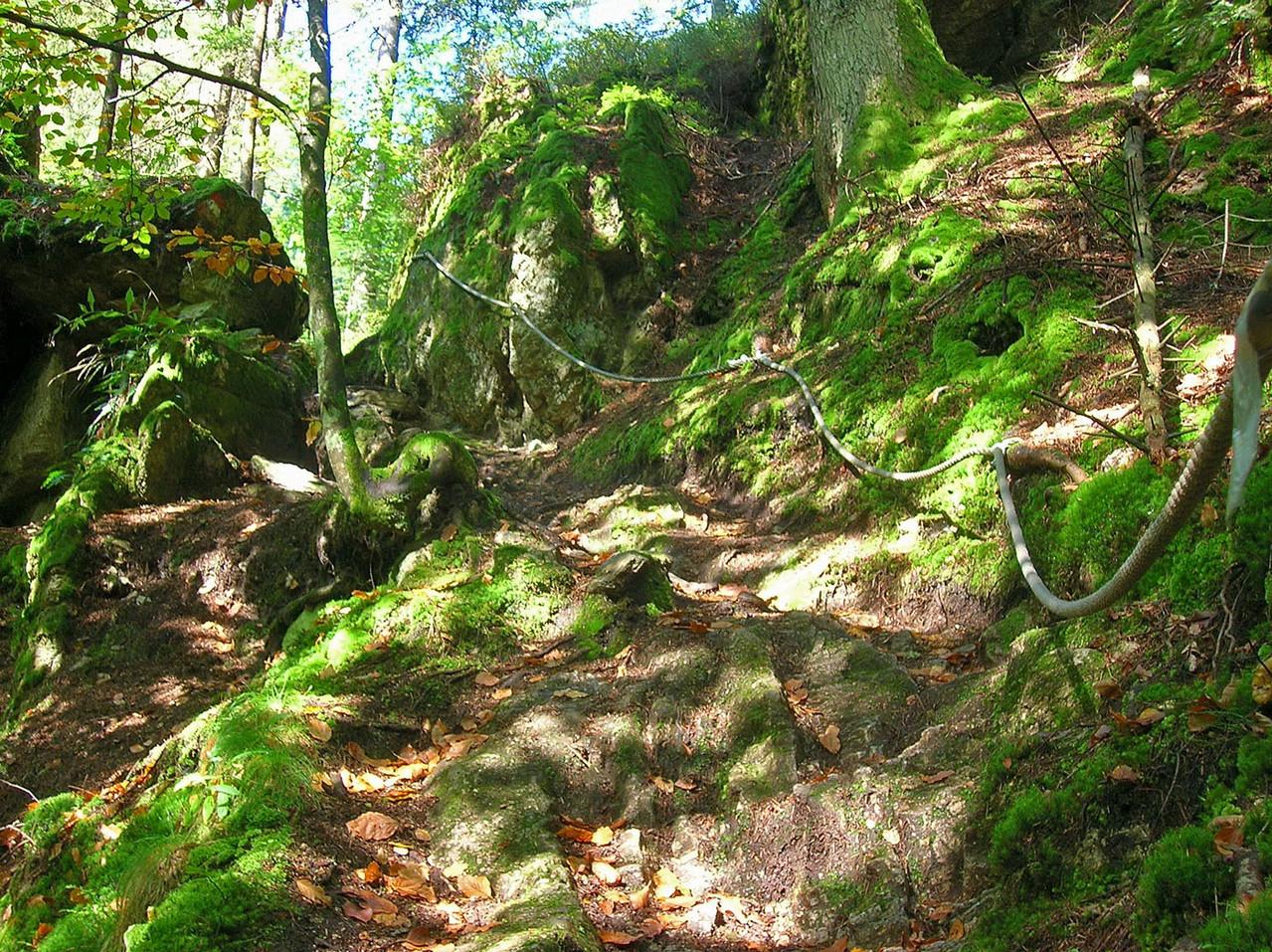 Mündungsbereich Rosenbach