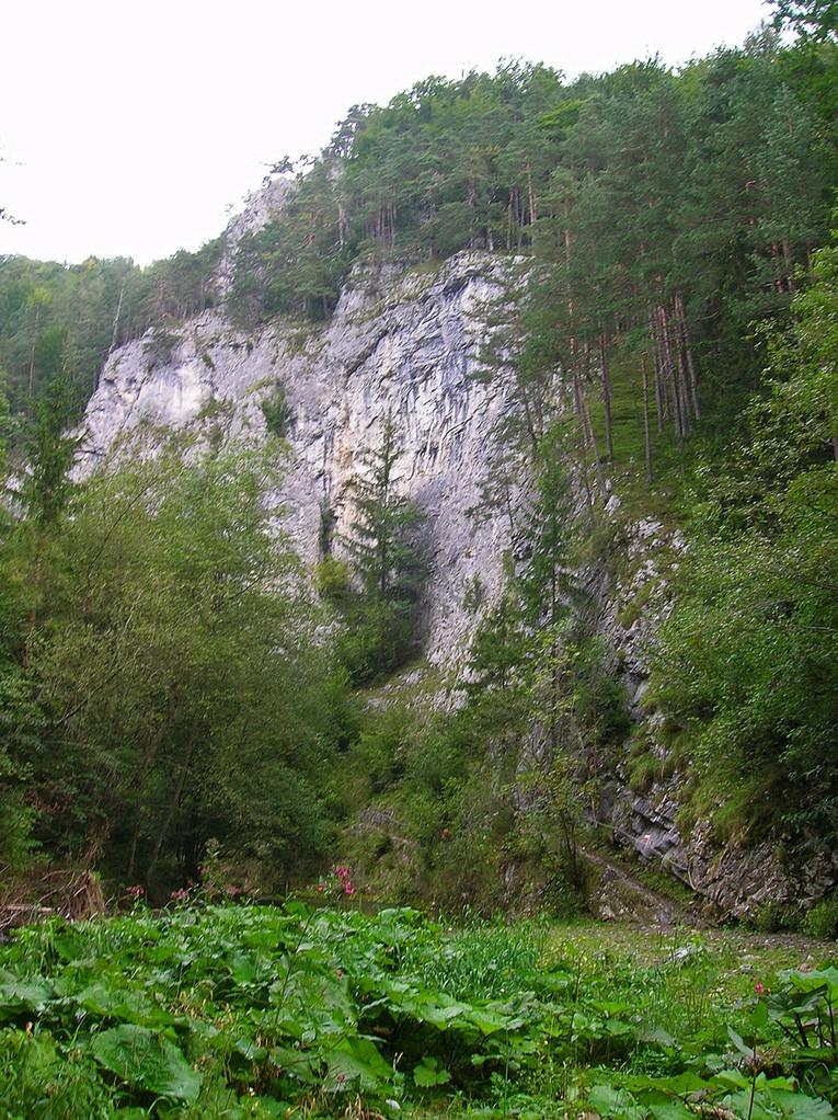 Enzianwand