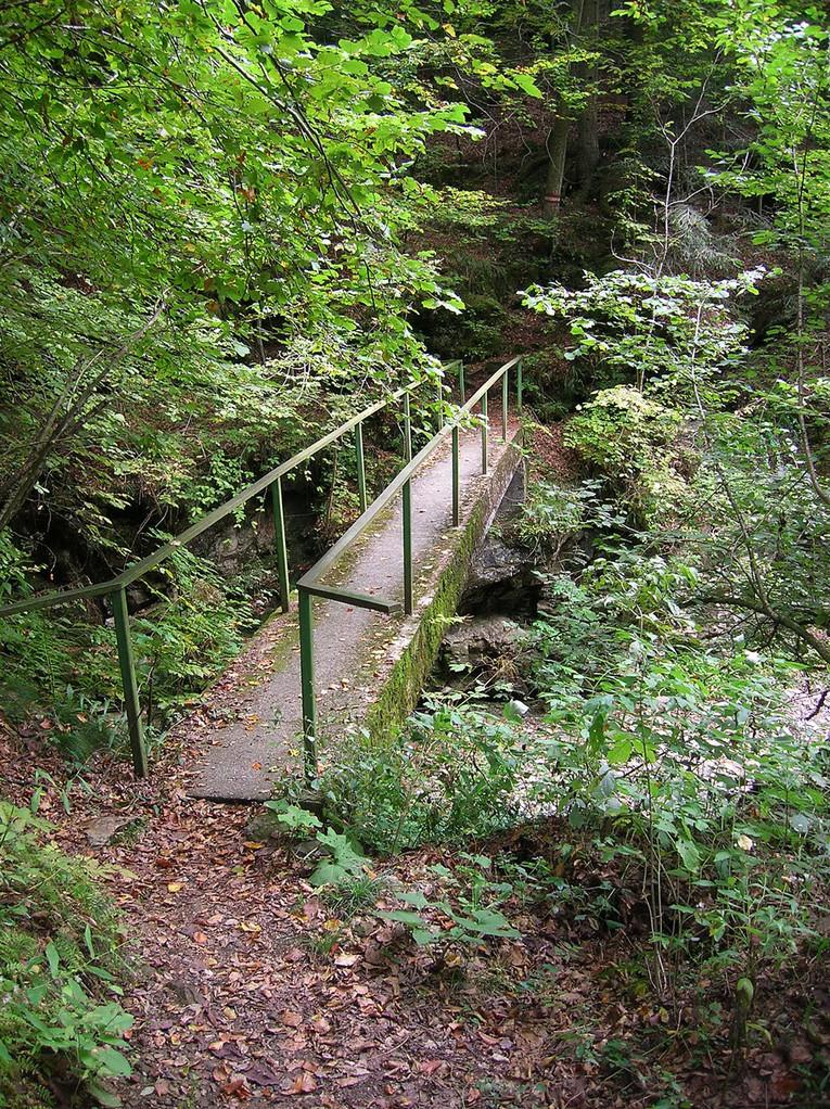 Buchbauersteig