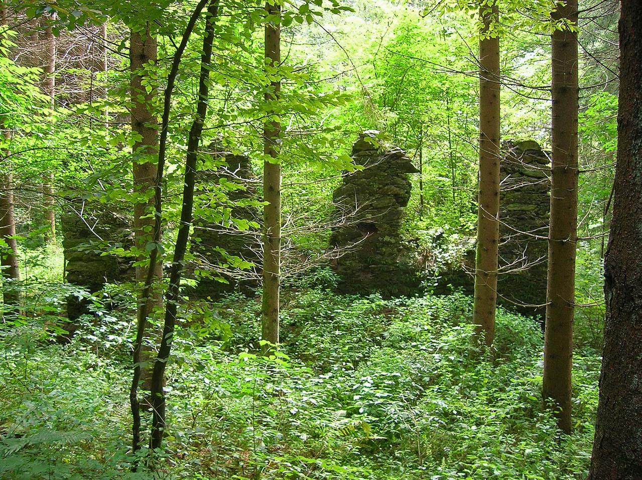 Alte Fürstmühle