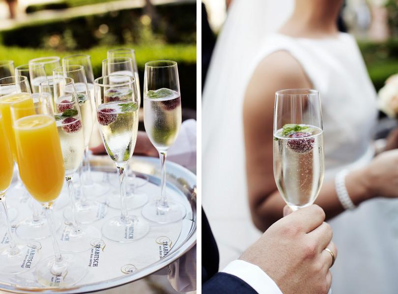 freie Trauung Sektempfang Trauzeremonie Empfang Gratulation Sekt Anstoßen Gläser Anstoßen freie Trauung Hochzeit Redner gratulieren Sekt Gratulation Empfang