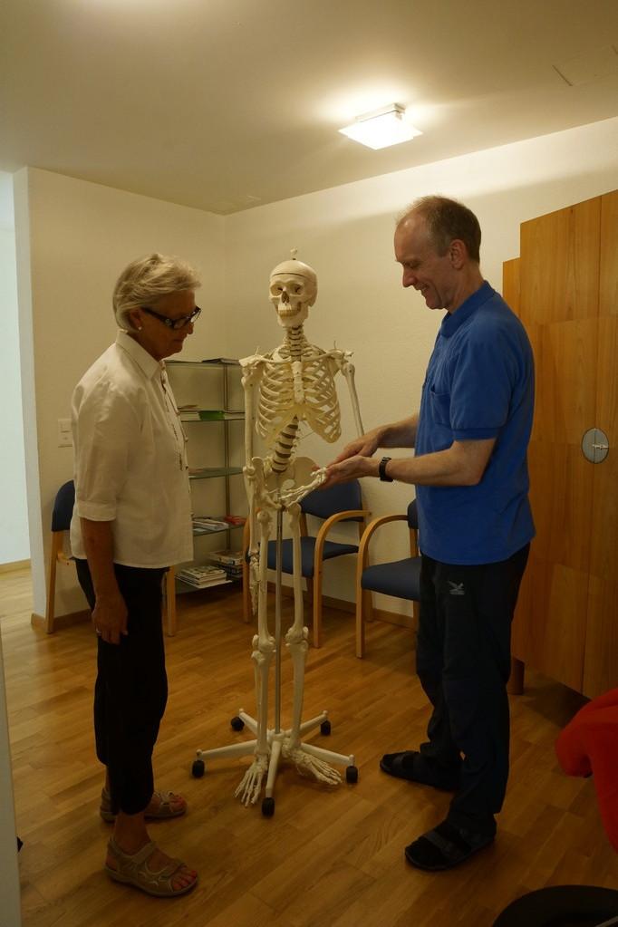 Anatomische Erläuterungen am Skelett