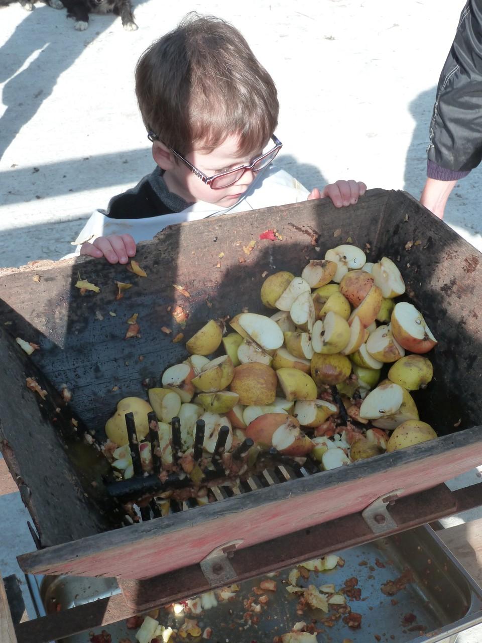 Animation d'automne : fabrication de jus de pomme