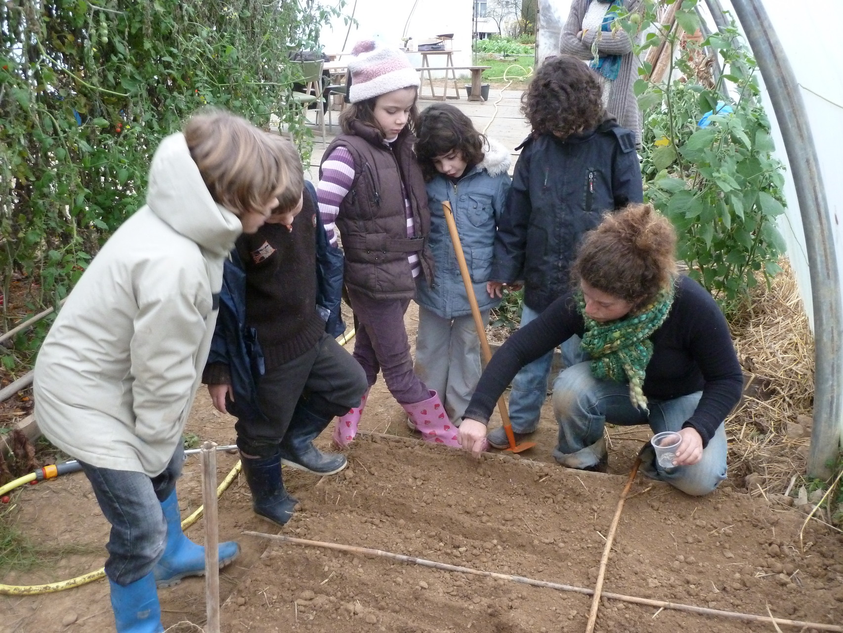 Jardinage : comment semer ?