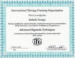 米国ITT0認定上級NLP       (神経言語プログラミング)修了