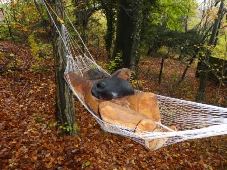 Zeder 'Abhängen' im Paradies mit Katze auf dem Bauch