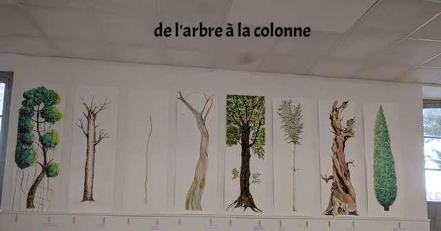 De l'arbre à la colonne  travaux d'élèves
