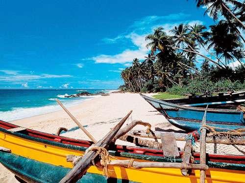 Korting 17 daagse Rondreis Sri Lanka Klassiek en ontdek de tempels en ontmoet de olifanten
