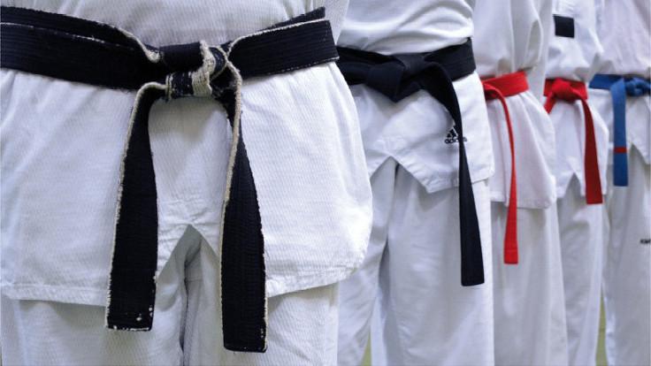 Bild: Dae Shim Do,Taekwondo