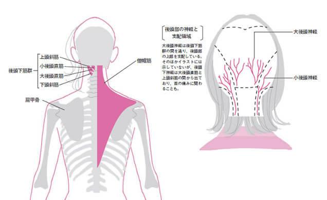 頭痛を引き起こす流れの図