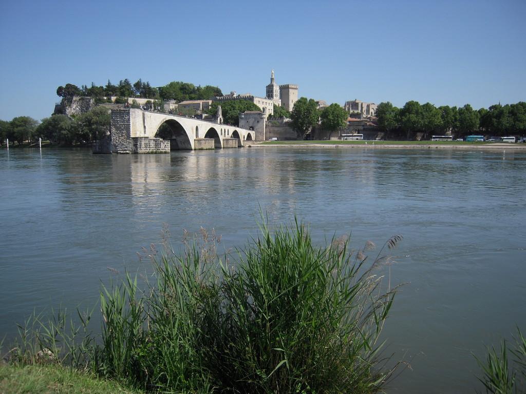 Vue sur le Palais des papes, Avignon (84)