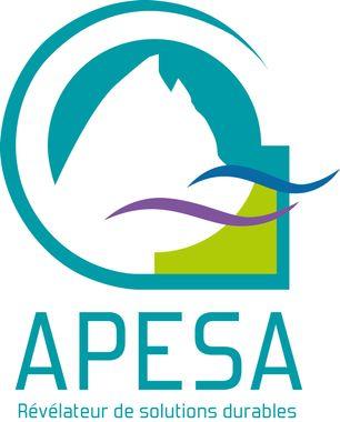 ASSOCIATION APESA