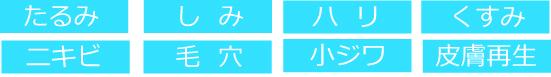 札幌 エステ 豊平 清田 おすすめ 二の腕 肝斑 リピート率 プラズマ
