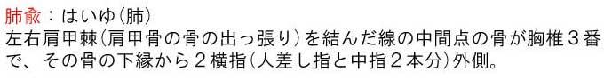 経穴(ツボ)・3