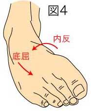 足関節の底屈・内反