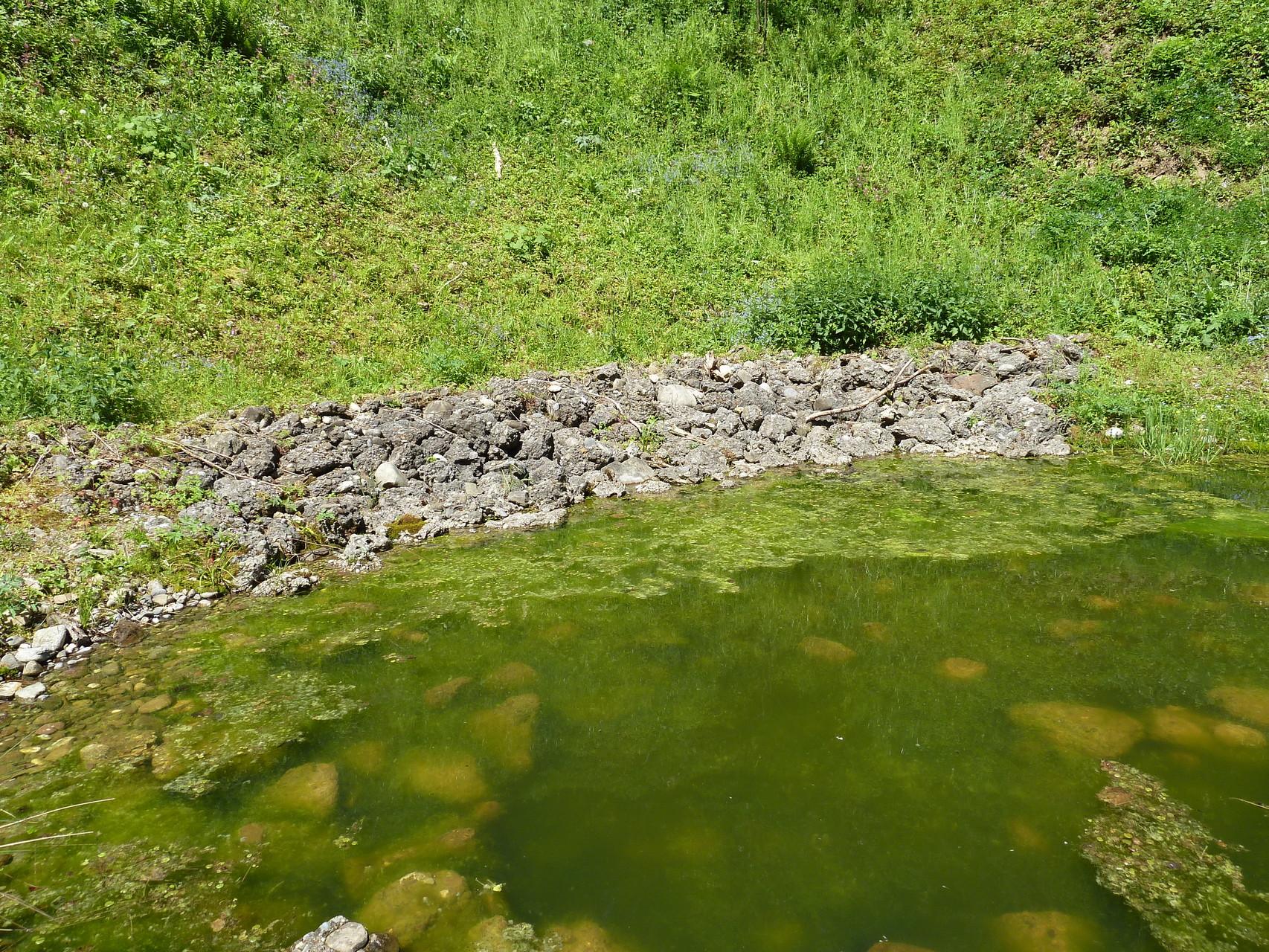 div Bilder vom Strumätteli und Kiesgrube