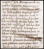 Diedenhofener Kapitular 805 n.Ch.