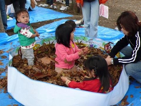 徳丸子どもセンターの枯れ葉のプール